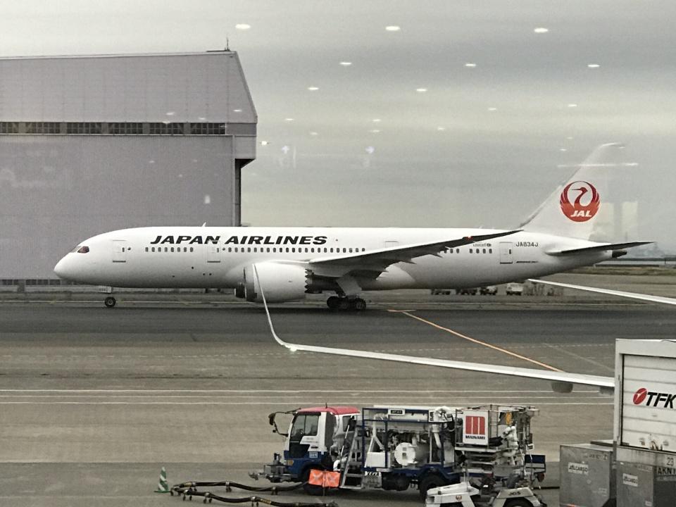 beesukeさんの日本航空 Boeing 787-8 Dreamliner (JA834J) 航空フォト