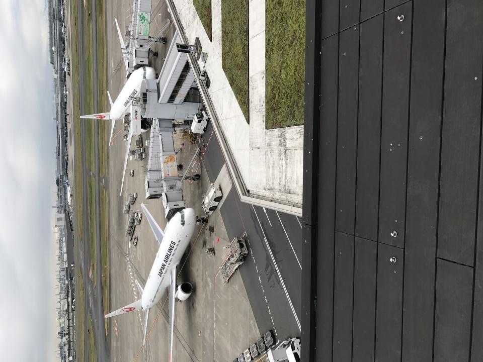 beesukeさんの日本航空 Boeing 777-200 (JA007D) 航空フォト