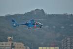 ながっちゃんさんが、福岡空港で撮影した福岡県警察 EC135P2+の航空フォト(写真)