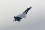 もぐ3さんが、新田原基地で撮影した航空自衛隊 F-15DJ Eagleの航空フォト(飛行機 写真・画像)
