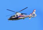 485k60さんが、福岡空港で撮影した熊本県防災消防航空隊 AS365N3 Dauphin 2の航空フォト(写真)