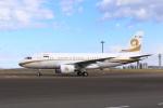 たまさんが、羽田空港で撮影したリライアンス・インダストリーズ A319-115CJの航空フォト(写真)