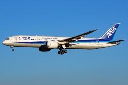 Ariesさんが、成田国際空港で撮影した全日空 787-9の航空フォト(写真)