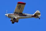 はるかのパパさんが、利根川河川敷緑地公園で撮影した羽生ソアリングクラブ A-1 Huskyの航空フォト(写真)
