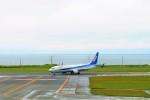 DRAGENSさんが、稚内空港で撮影した全日空 737-881の航空フォト(写真)