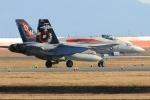 多摩川崎2Kさんが、岩国空港で撮影したアメリカ海兵隊 F/A-18C Hornetの航空フォト(写真)