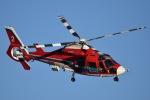 筑波のヘリ撮りさんが、ホンダエアポートで撮影した埼玉県防災航空隊 AS365N3 Dauphin 2の航空フォト(写真)