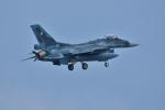 qooさんが、那覇空港で撮影した航空自衛隊 F-2Aの航空フォト(写真)