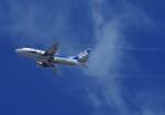 mild lifeさんが、伊丹空港で撮影したANAウイングス 737-5L9の航空フォト(写真)