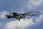 Mochi7D2さんが、厚木飛行場で撮影したアメリカ海軍 F/A-18F Super Hornetの航空フォト(写真)