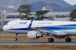 katsuura.Dさんが、徳島空港で撮影した全日空 A321-211の航空フォト(飛行機 写真・画像)
