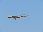 おっつんさんが、嘉手納飛行場で撮影したアメリカ空軍 F-15C-39-MC Eagleの航空フォト(写真)