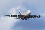 Jinxさんが、ブリスベン空港で撮影したエミレーツ航空 A380-861の航空フォト(写真)