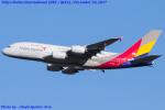 Chofu Spotter Ariaさんが、成田国際空港で撮影したアシアナ航空 A380-841の航空フォト(飛行機 写真・画像)