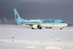 北の熊さんが、新千歳空港で撮影した大韓航空 737-9B5/ER の航空フォト(写真)