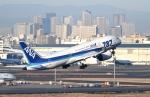 ワーゲンバスさんが、羽田空港で撮影した全日空 787-8 Dreamlinerの航空フォト(写真)