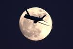 羽田空港 - Tokyo International Airport [HND/RJTT]で撮影されたユナイテッド航空 - United Airlines [UA/UAL]の航空機写真