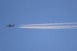 多楽さんが、茨城空港で撮影したアシアナ航空 A380-841の航空フォト(写真)