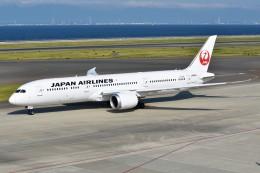 shimashimaさんが、中部国際空港で撮影した日本航空 787-9の航空フォト(飛行機 写真・画像)
