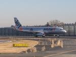 delawakaさんが、成田国際空港で撮影したジェットスター・ジャパン A320-232の航空フォト(写真)