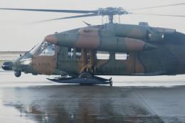 kij niigataさんが、新潟空港で撮影した陸上自衛隊 UH-60JAの航空フォト(写真)