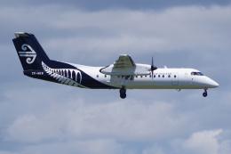 PASSENGERさんが、オークランド空港で撮影したエア・ネルソン DHC-8-311Q Dash 8の航空フォト(飛行機 写真・画像)