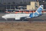 キイロイトリ1005fさんが、羽田空港で撮影したBBJ One 737-7CJ BBJの航空フォト(写真)