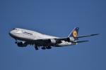 ぬま_FJHさんが、羽田空港で撮影したルフトハンザドイツ航空 747-830の航空フォト(写真)