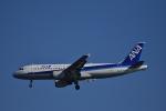 ぬま_FJHさんが、羽田空港で撮影した全日空 A320-211の航空フォト(写真)