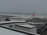 さゆりんごさんが、小松空港で撮影した日本航空 767-346の航空フォト(写真)