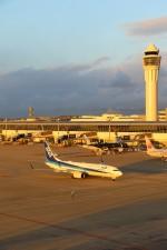 westtowerさんが、中部国際空港で撮影した全日空 737-881の航空フォト(写真)