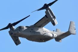Flankerさんが、岩国空港で撮影したアメリカ海兵隊 MV-22Bの航空フォト(飛行機 写真・画像)