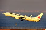 まいけるさんが、羽田空港で撮影した日本航空 737-846の航空フォト(写真)