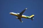 MOHICANさんが、成田国際空港で撮影したセブパシフィック航空 A320-214の航空フォト(写真)