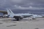 Scotchさんが、ファロン海軍航空ステーションで撮影したアメリカ海軍 EA-18G Growlerの航空フォト(飛行機 写真・画像)