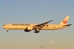 camelliaさんが、成田国際空港で撮影した日本航空 777-346/ERの航空フォト(写真)