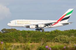 ブリスベン空港 - Brisbane Airport [BNE/YBBN]で撮影されたブリスベン空港 - Brisbane Airport [BNE/YBBN]の航空機写真