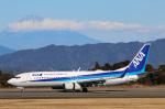 takaRJNSさんが、静岡空港で撮影した全日空 737-881の航空フォト(写真)