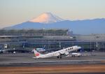 タミーさんが、羽田空港で撮影したジェイ・エア ERJ-190-100(ERJ-190STD)の航空フォト(写真)
