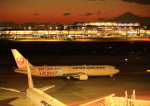 タミーさんが、羽田空港で撮影した日本航空 767-346/ERの航空フォト(写真)