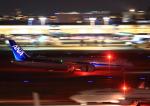 タミーさんが、羽田空港で撮影した全日空 787-9の航空フォト(写真)