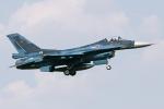 Echo-Kiloさんが、横田基地で撮影した航空自衛隊 F-2Aの航空フォト(写真)