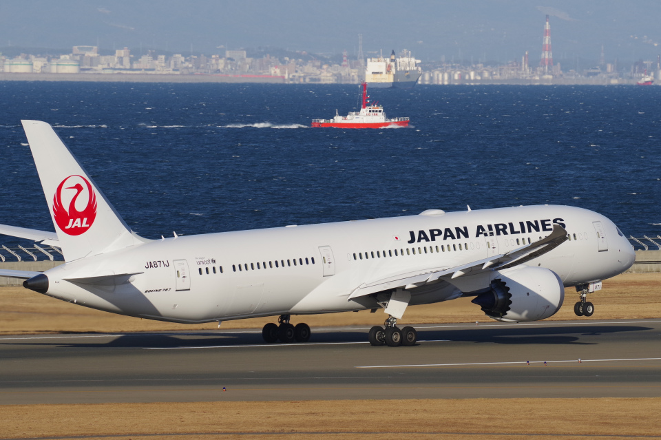 yabyanさんの日本航空 Boeing 787-9 (JA871J) 航空フォト