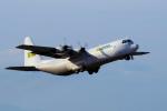 yabyanさんが、中部国際空港で撮影したリンデン・エアカーゴ L-100-30 Herculesの航空フォト(飛行機 写真・画像)
