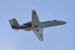 tsubasa0624さんが、羽田空港で撮影した読売新聞 560 Citation Encore+の航空フォト(飛行機 写真・画像)