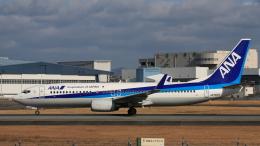 Cassiopeia737さんが、伊丹空港で撮影した全日空 737-881の航空フォト(飛行機 写真・画像)