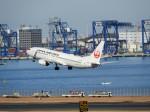おっつんさんが、羽田空港で撮影した日本航空 737-846の航空フォト(飛行機 写真・画像)