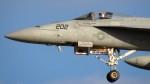 Ocean-Lightさんが、厚木飛行場で撮影したアメリカ海軍 F/A-18E Super Hornetの航空フォト(写真)