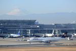 prado120さんが、羽田空港で撮影したルフトハンザドイツ航空 A350-941XWBの航空フォト(写真)