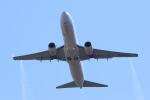 多楽さんが、成田国際空港で撮影した大韓航空 737-8BKの航空フォト(写真)